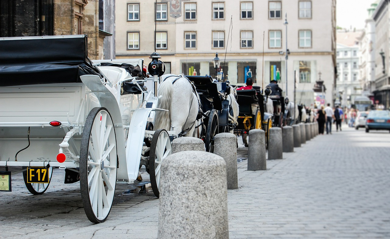 Carriages on the street in Vienna