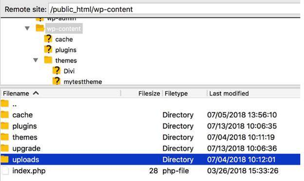 Popular WordPress Errors