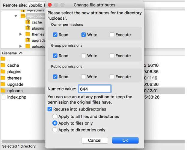 wordpress ftp settings