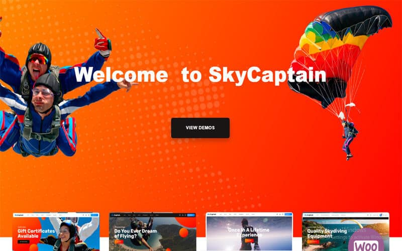 SkyCaptain