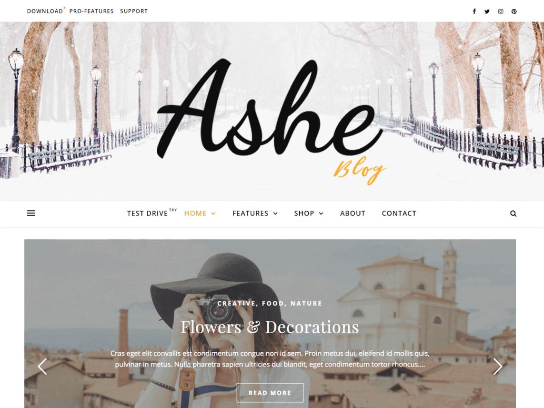 preview screenshot of Ashe WordPress theme