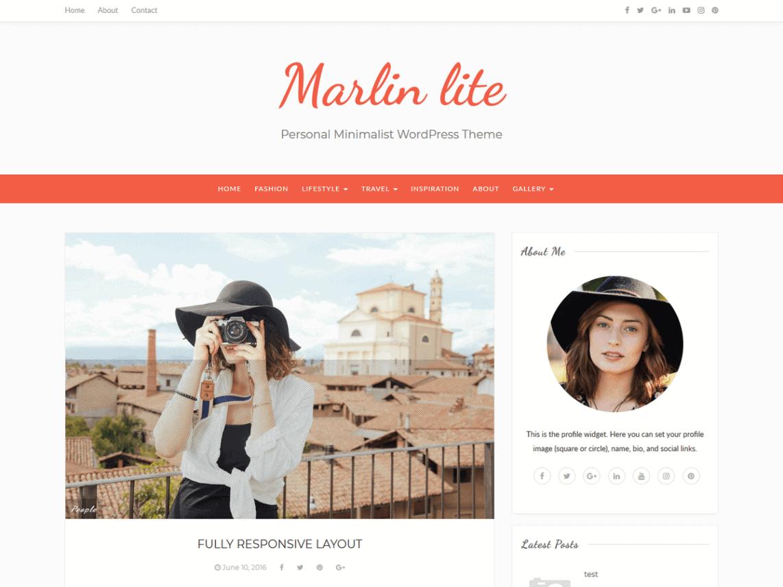 preview screenshot of Marlin lite WordPress blog theme
