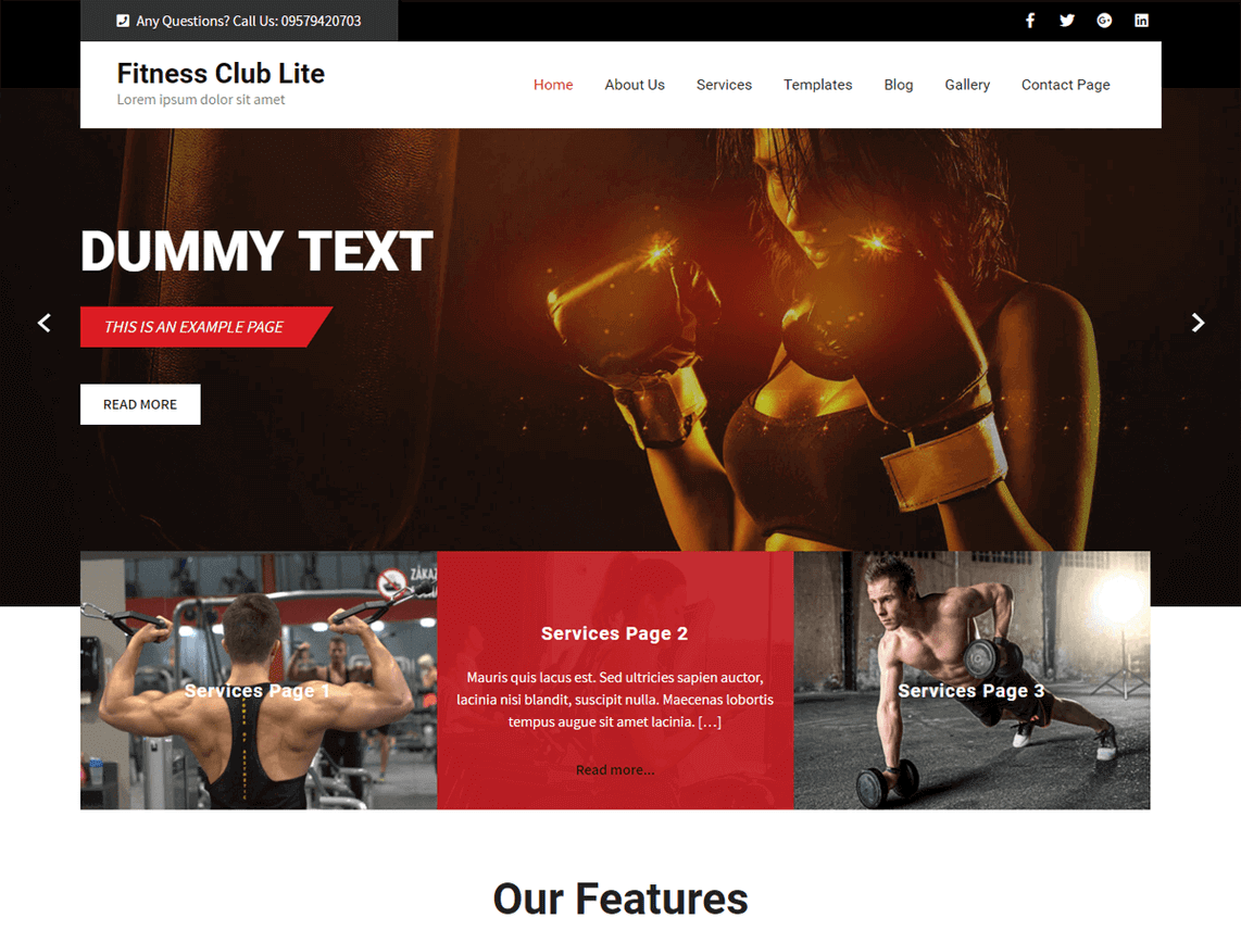 preview screenshot of WordPress Fitness Club Lite theme