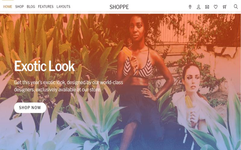 Screenshot for Shoppe Theme