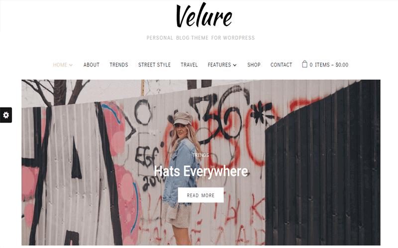 Screenshot for Velure WordPress Theme