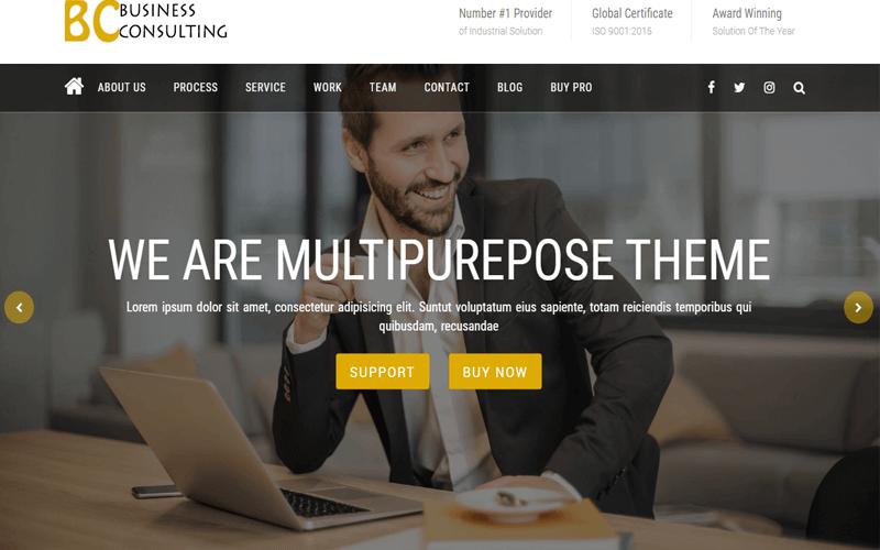 BC Business Consulting Multipurpose