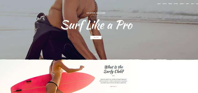surfy-surfing-and-water-sports