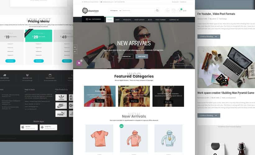 ShopStore :- WordPress / WooCommerce Store Theme