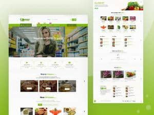Grocery-Store :- Free WooCommerce Theme
